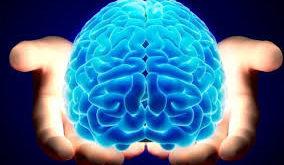 Цікаві факти про роботу мозку, які доводять, що ми здатні на все